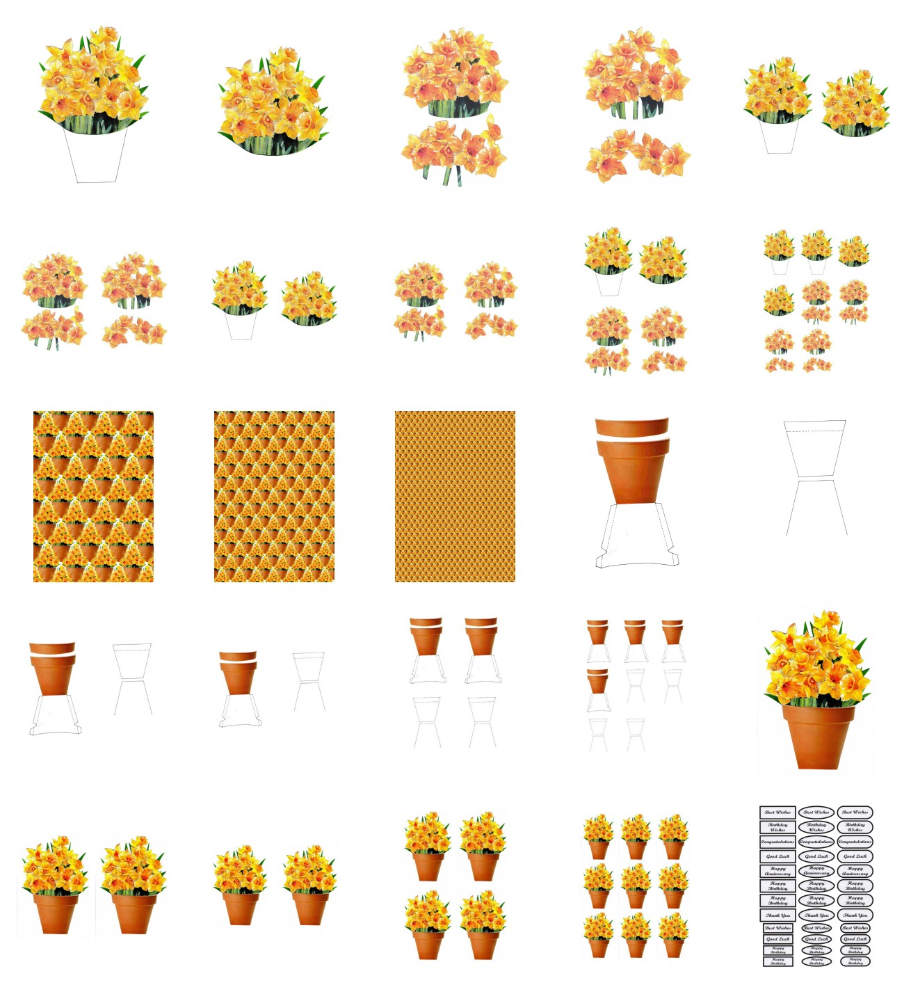 Spring Daffodil Set 01 Flowers - 25 Pages to Download