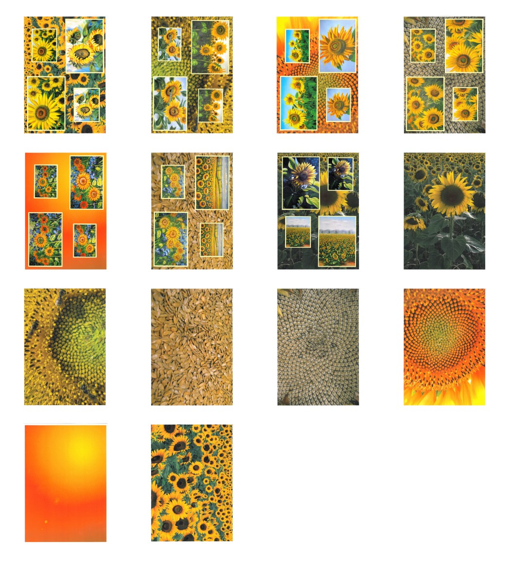 Sunflower Surprise Complete Set - 14 Pages to DOWNLOAD
