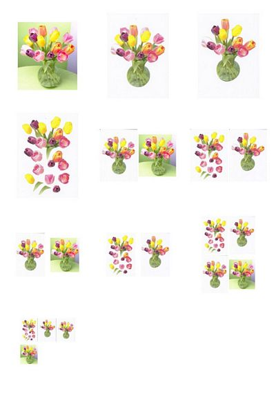 Assorted Tulips in a Vase Project - 10 Pages to Download