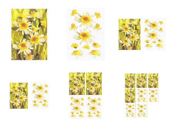 Daisies in Grass 3D Project - 6 Pages to Download