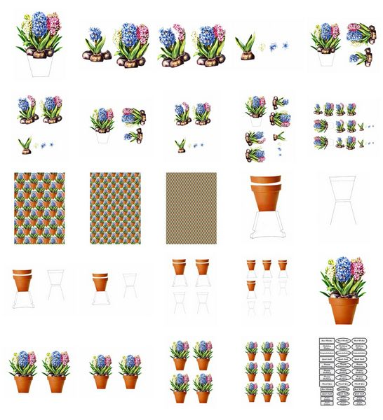 Spring Hyacinth Flowers Set - 25 Pages to Download