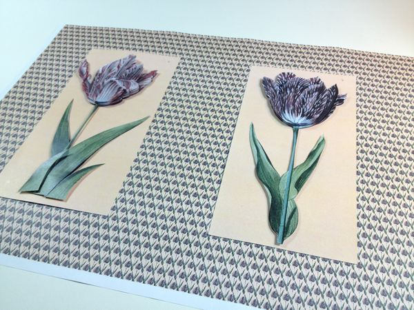 Get Creative 13/01/18 Spring Tulip Project 04 - 9 Pages to Download